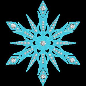 sneeuwvlok1